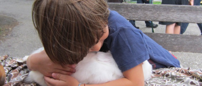Tiergestützte Therapie gibt Trost